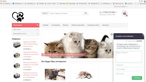 sajt-zoomagazin-v-astane